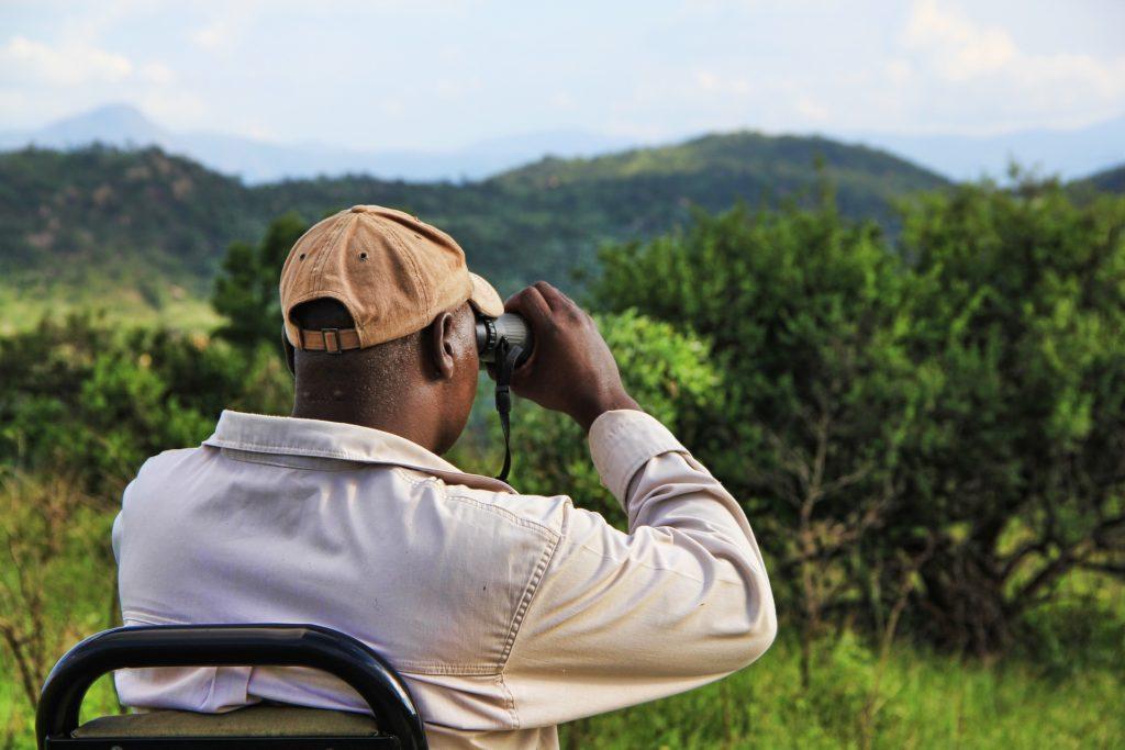 Homme utilisant des jumelles lors d'un safari en Afrique