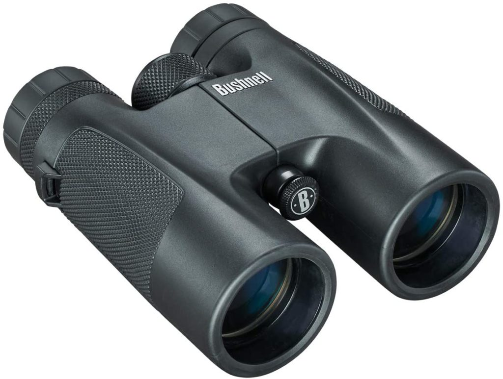 Jumelles Bushnell Powerview 10x42 141042